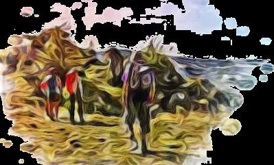 Randonnee pedestre marche 1